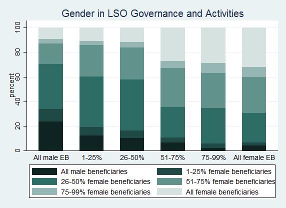 GenderLSOGovernanceActivities.jpg